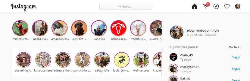 Imagen de Instagram web