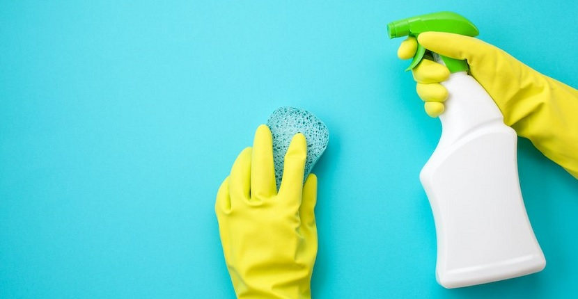 Limpieza contra las hormigas