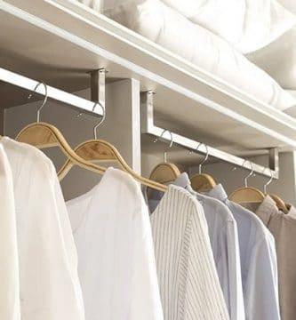 Polillas en los armarios